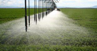 قیمت تجهیزات آبیاری تحت فشار زیر قیمت بازار